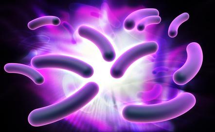 Classement des microorganismes en 4 groupes