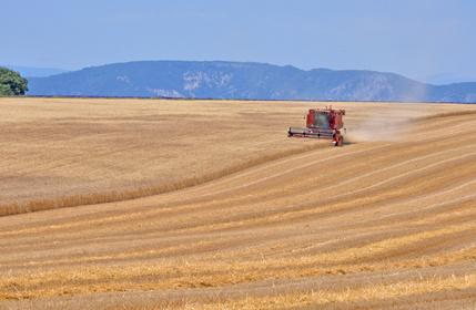 Réduire les émissions d'ammoniac dans l'agriculture