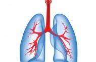 Pathologies pulmonaires causées par l'amiante