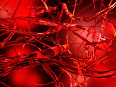 Dépistage et prévention du risque cardiovasculaire en 2019